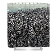 Hundreds Of Robots Running Wild Shower Curtain