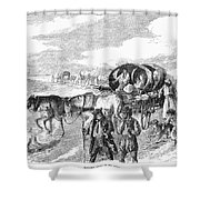 Hungarian Gypsies, 1874 Shower Curtain