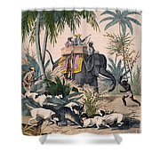 Hunting: Big Game, 1852 Shower Curtain