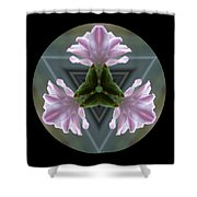 Hyacinth Kaleidoscope Shower Curtain