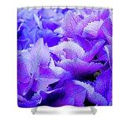 Hydrangea Petals Shower Curtain