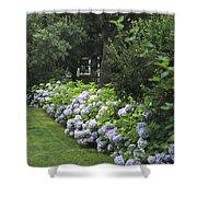 Hydrangeas In Bloom Along A Landscaped Shower Curtain