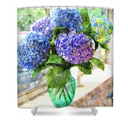 Hydrangeas In The Sun Shower Curtain