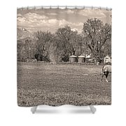Hygiene Colorado Boulder County Scenic View Sepia Shower Curtain