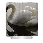 I Am Too Sexy For My Feathers Shower Curtain