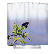 I Fly High Shower Curtain