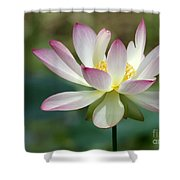 I Love Lotus Shower Curtain