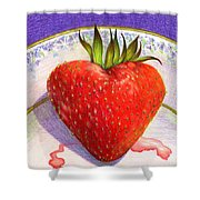 I Love You Berry Much Shower Curtain