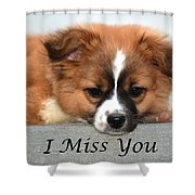 I Miss You Card Shower Curtain
