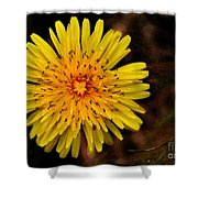 I Want To Be A Flower... Shower Curtain