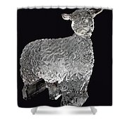 Ice Cold Lamb Carved In Ice Shower Curtain