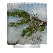 Ice Crystals And Pine Needles Shower Curtain
