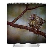 Ice Droplet Bird Shower Curtain