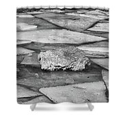 Ice Puzzle Holding Shower Curtain