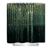 Ice Winter Denmark Shower Curtain
