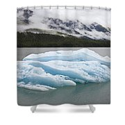 Iceberg In Endicott Arm, Inside Shower Curtain