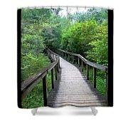 Ichetucknee Forest Pathway Shower Curtain