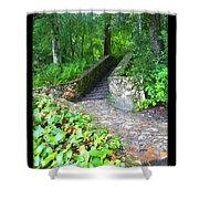 Ichetucknee Stairway Shower Curtain