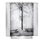 Icing On The Lake Shower Curtain
