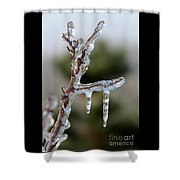 Icy Branch-7529 Shower Curtain