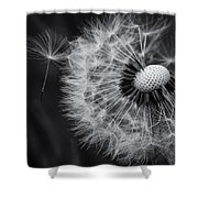 If Only Wishes Came True Shower Curtain