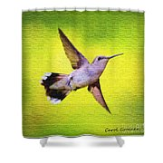 If Wishes Had Wings Shower Curtain