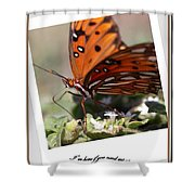 If You Need Me - Butterfly Shower Curtain