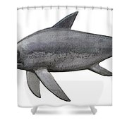 Illustration Of An Eurhinosaurus Shower Curtain by Sergey Krasovskiy