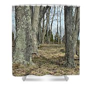 Imagination Pathway Shower Curtain