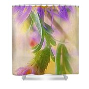 Impression Of Asters Shower Curtain