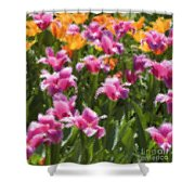 Impressionist Tulips In A Field Shower Curtain