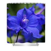 In A Blue Mood Shower Curtain