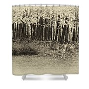 In A Yellow Wood Antique Shower Curtain