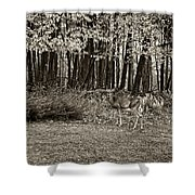 In A Yellow Wood Sepia Shower Curtain