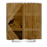 In Another Time Shower Curtain