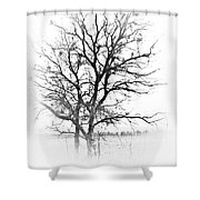 In Black And White Shower Curtain