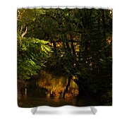 In Golden Moments Of Reflection Shower Curtain