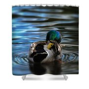 In His Own Moment Shower Curtain