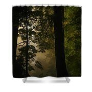 In Soft Shades Of Paradise Shower Curtain