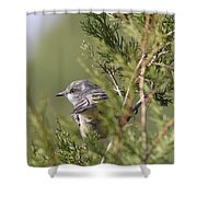 In The Bushes Shower Curtain