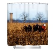 In The Corn 1 Shower Curtain