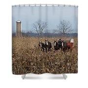 In The Corn 2 Shower Curtain
