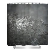 In The Garden Of The Snowflakes Shower Curtain