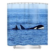 In The Great Wide Ocean Shower Curtain