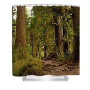 In The Land Of The Giants  Shower Curtain