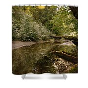 In The Stillness Of Paradise Shower Curtain