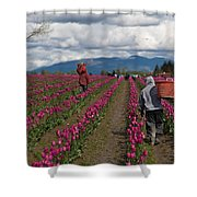 In The Tulip Fields Shower Curtain