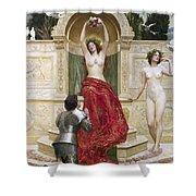 In The Venusburg Shower Curtain