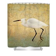 Incidental Dance Shower Curtain