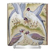 India: Pheasants Shower Curtain